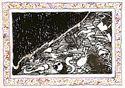 """Picture of ALECHINSKY PIERRE (1927 - ) """"SANS L'ECORSE B"""""""